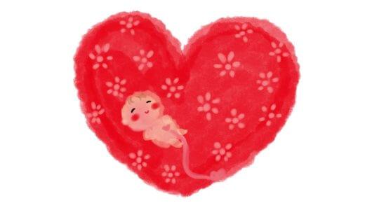 【ヒモみたいなおもちゃで遊んでた!】胎内記憶を話してくれた長女の話