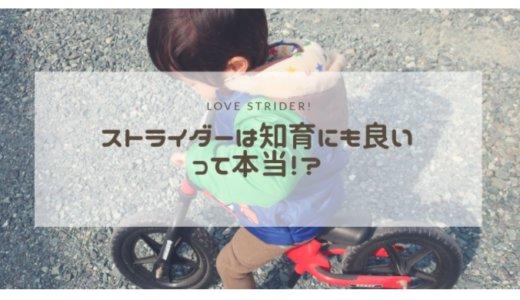 ストライダー購入レビュー。自転車に移行しやすいって本当?メリットとデメリット